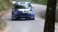 Skoda Fabia S2000 Rally Car in Action