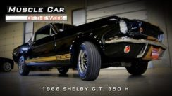 Classic Muscle Car: 1966 Shelby GT 350H