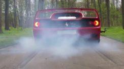 Ferrari F50 Burnout