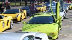 Loads of Lamborghinis!