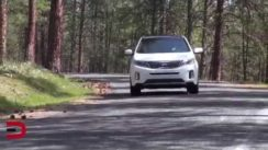 2014 Kia Sorento SX SUV Review Video