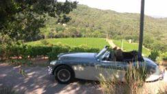 Cruising French Countryside in an Austin Healey 3000 MKIII